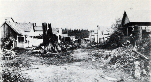 Water Street, from Cambie looking east to Carrall a month before the fire. The forest in the distance is just past Main Street.